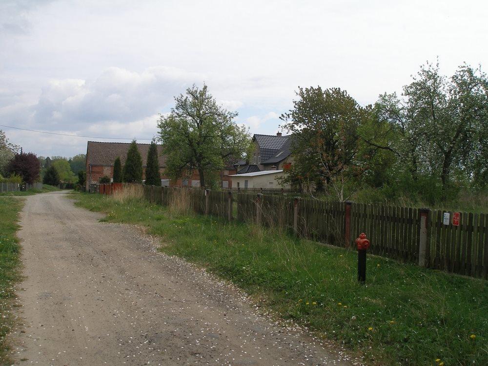 Działka budowlana na sprzedaż Goleniów  3044m2 Foto 4