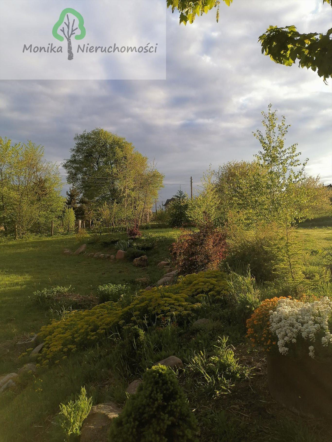 Lokal użytkowy na sprzedaż Szczerbięcin  93200m2 Foto 13
