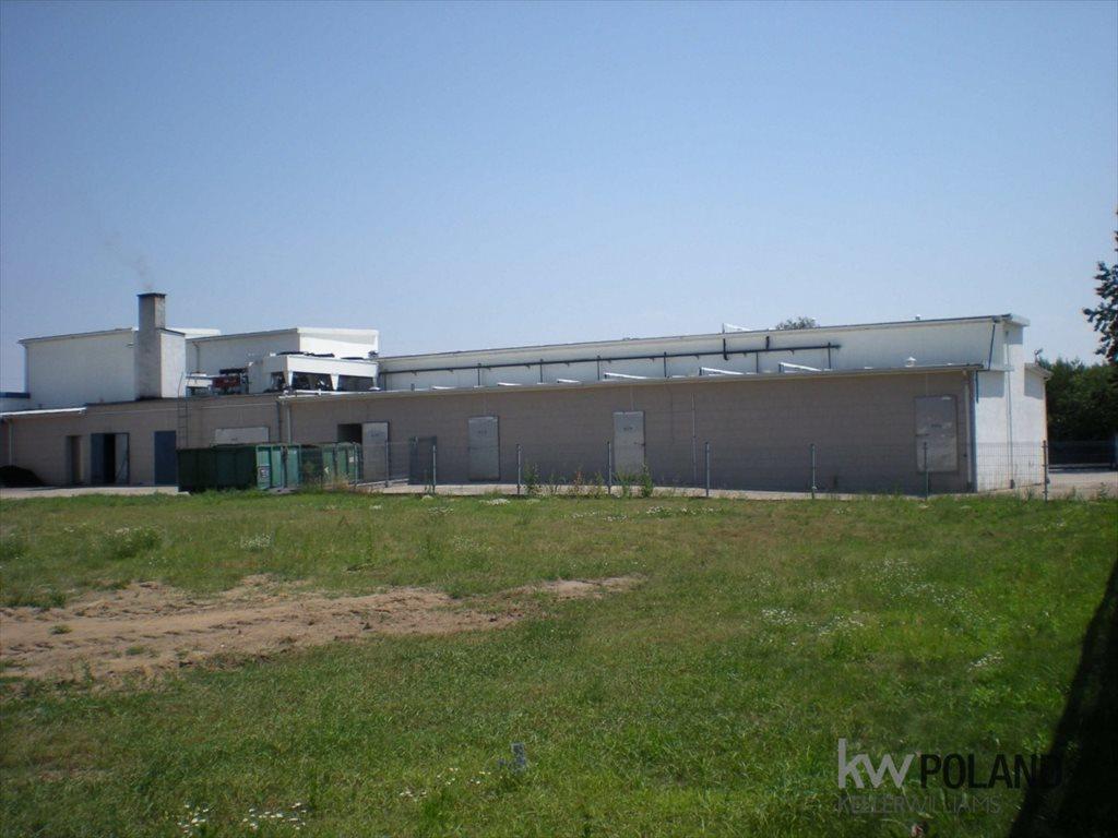 Lokal użytkowy na sprzedaż Łęka Opatowska  1010m2 Foto 9