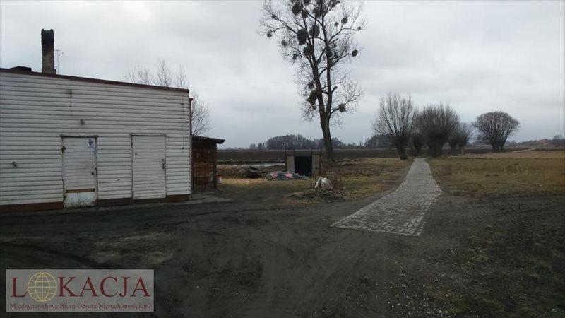 Lokal użytkowy na sprzedaż Nowe Skalmierzyce  180m2 Foto 3