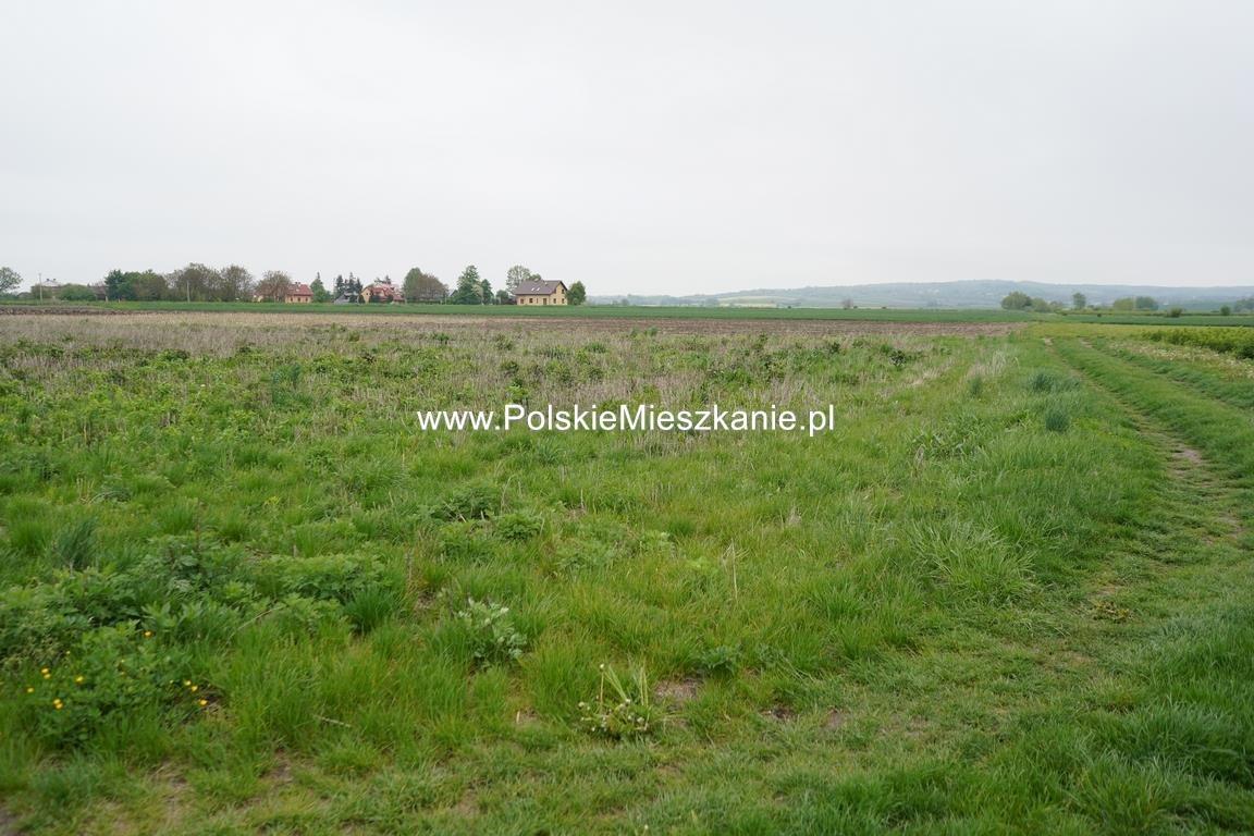 Działka rolna na sprzedaż Przemyśl, Krówniki  5500m2 Foto 8