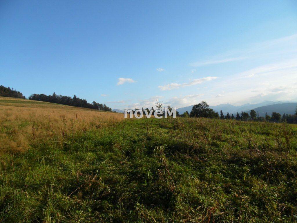 Działka rolna na sprzedaż Dzianisz  2508m2 Foto 7