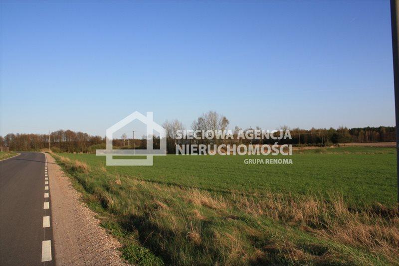 Działka siedliskowa na sprzedaż Stara Kiszewa  8767m2 Foto 3