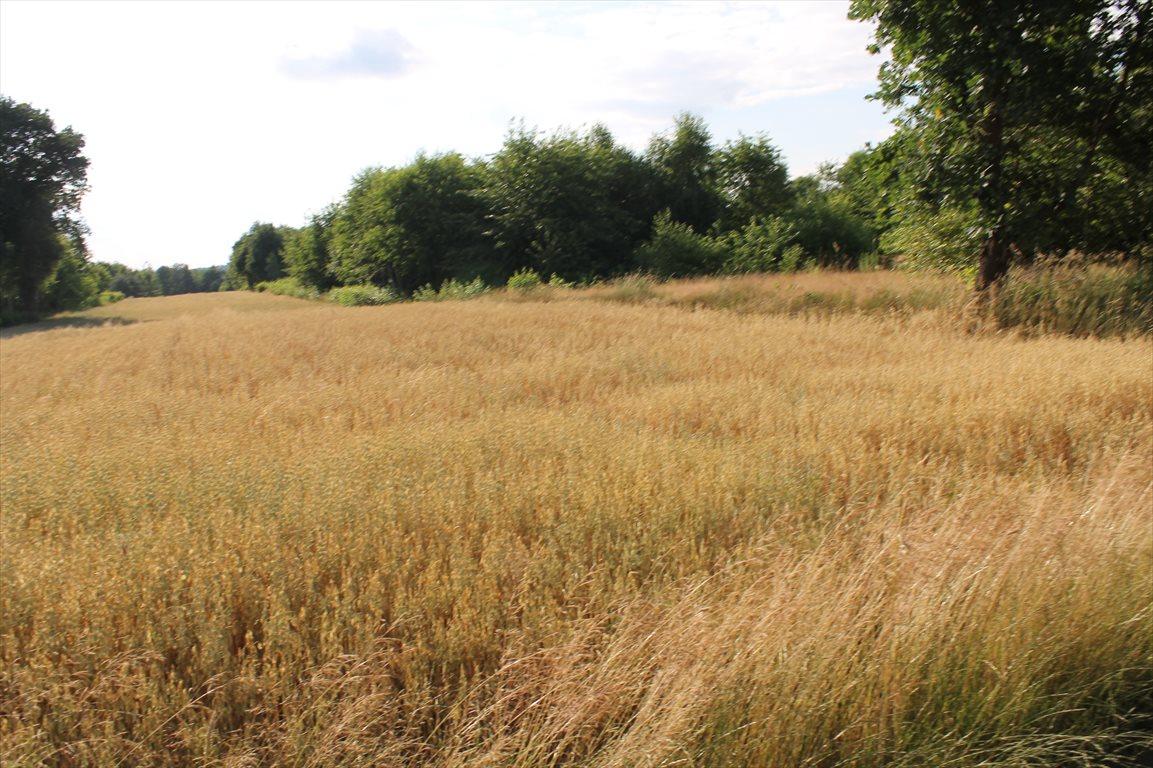 Działka rolna na sprzedaż Łagiewniki Nowe  9500m2 Foto 10