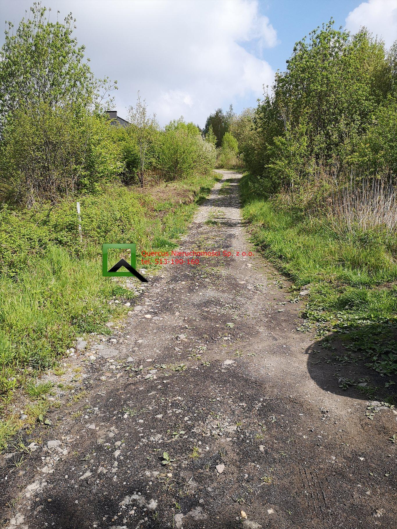 Działka budowlana na sprzedaż Raciborsko  1300m2 Foto 3