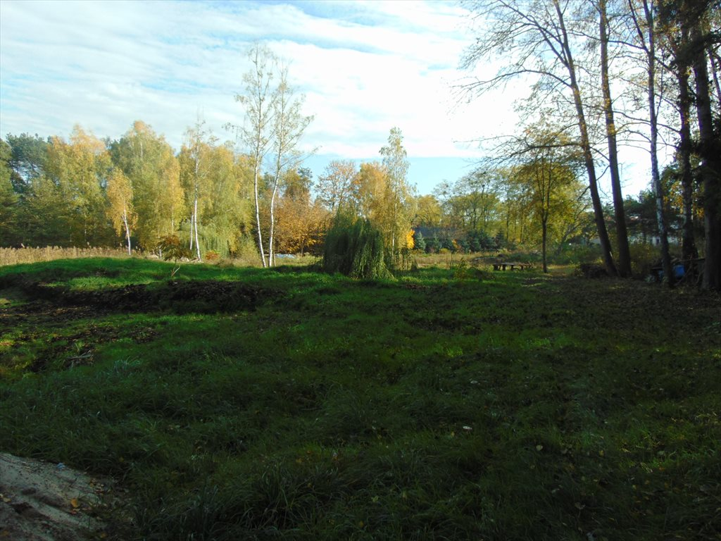 Działka komercyjna na sprzedaż Jerzykowo, Sosnowa  11700m2 Foto 6