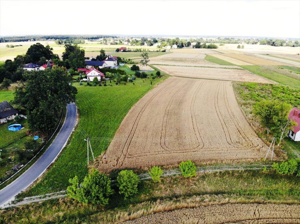 Działka budowlana na sprzedaż Wola Batorska, Dąbrówka  7600m2 Foto 4