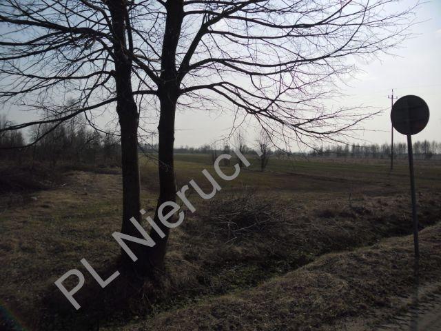 Działka rolna na sprzedaż Stanisławów  7200m2 Foto 2