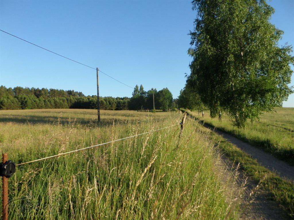 Działka rolna na sprzedaż Stare Kawkowo  3206m2 Foto 8