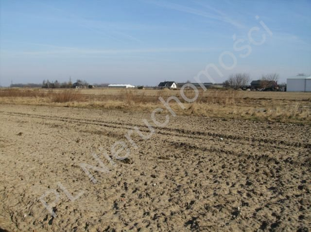 Działka budowlana na sprzedaż Błonie  6000m2 Foto 4