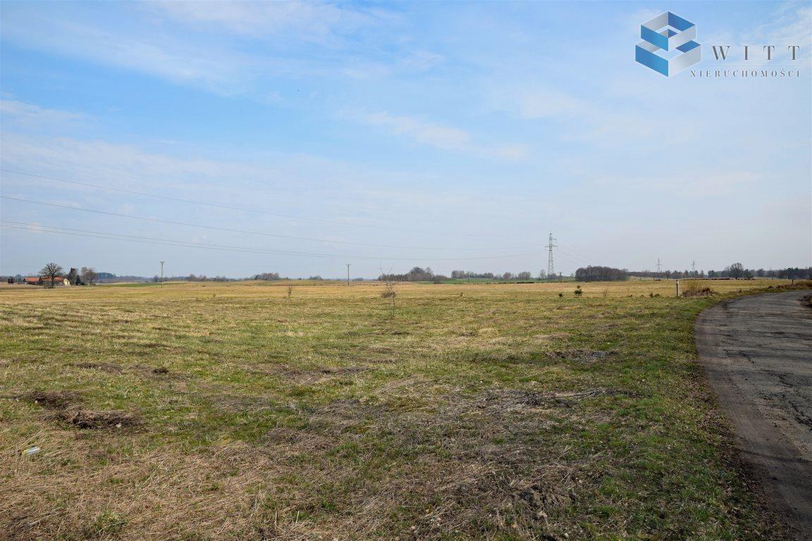 Działka rolna na sprzedaż Morąg, Kudypy  5200m2 Foto 9
