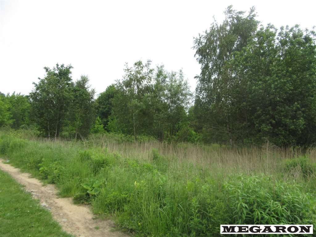 Działka inna na sprzedaż Częstochowa, Raków Zachód  12643m2 Foto 1