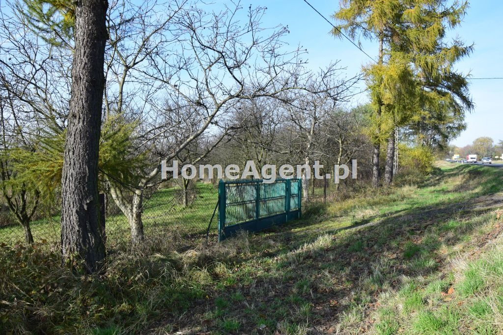 Działka budowlana na sprzedaż Wielka Wieś  7400m2 Foto 4
