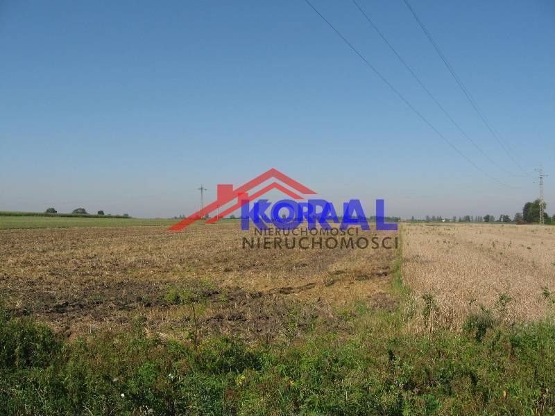 Działka rolna na sprzedaż Żerniki Wrocławskie, Dębowa  3366m2 Foto 5