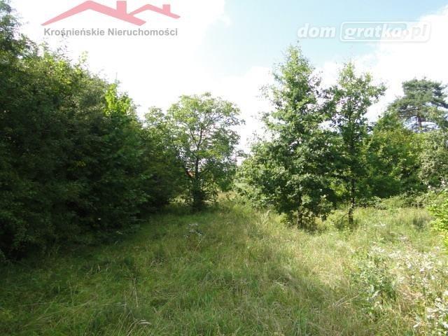 Działka rolna na sprzedaż Korczyna  1300m2 Foto 5
