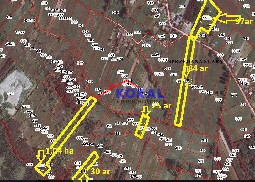 Działka leśna na sprzedaż Skrzypiów, Pińczów - Skrzypiów  10400m2 Foto 2