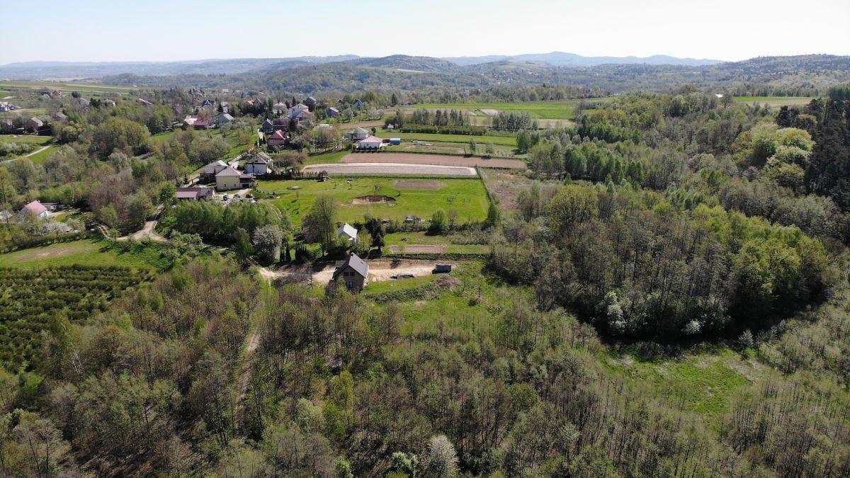 Działka siedliskowa na sprzedaż Grabno  11300m2 Foto 9