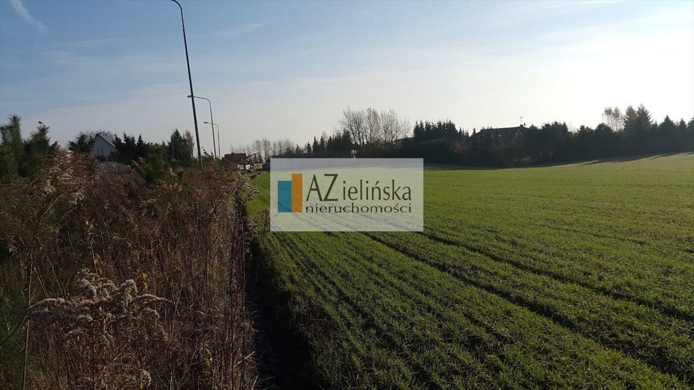 Działka budowlana na sprzedaż Puszczykowo  1250m2 Foto 2