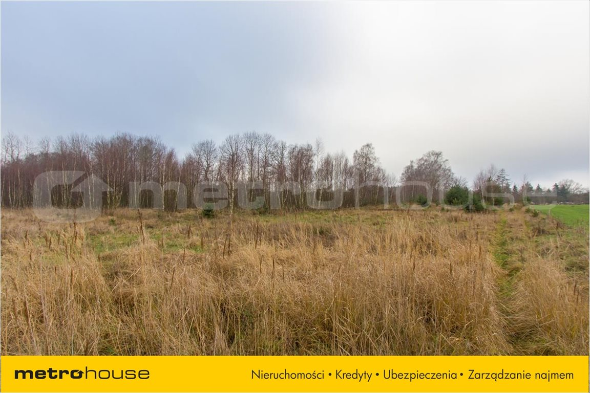 Działka rolna na sprzedaż Jelonek, Borne Sulinowo  30900m2 Foto 9