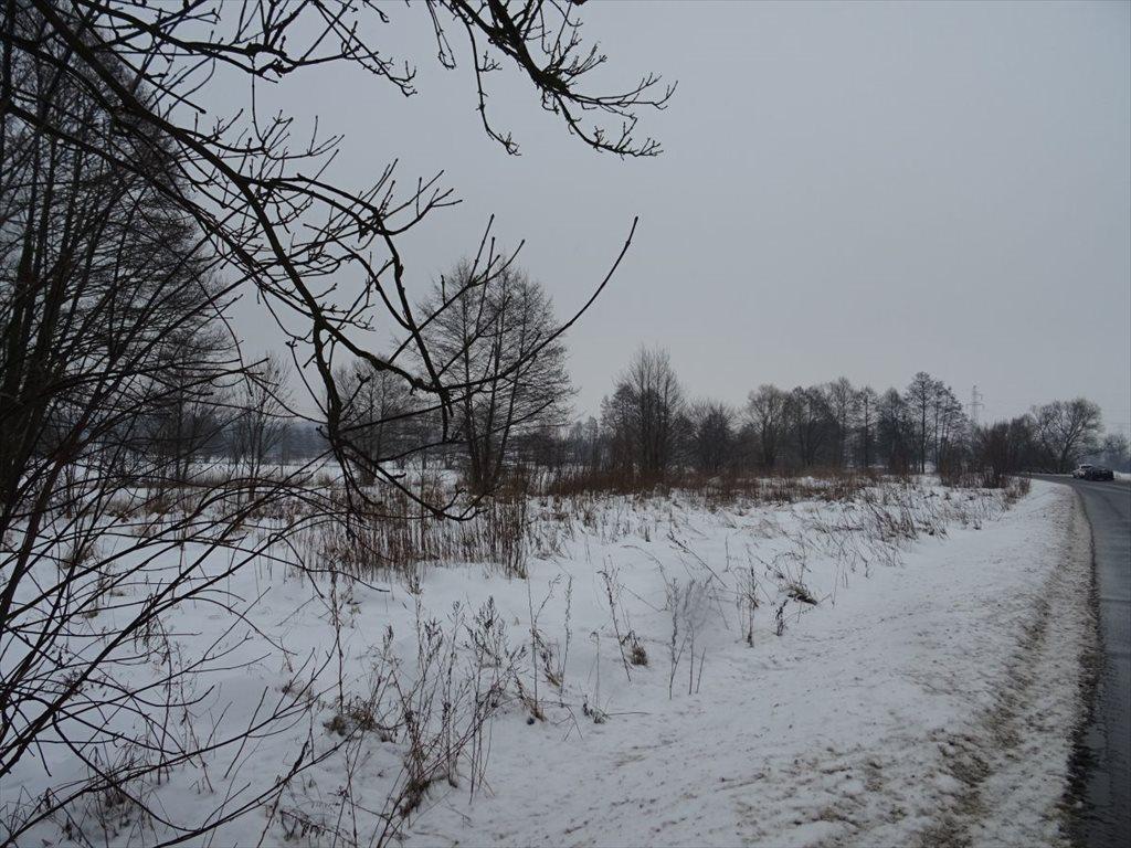 Działka siedliskowa na sprzedaż Grudziądz  3800m2 Foto 2