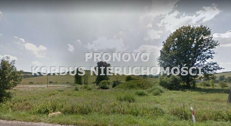 Działka leśna na sprzedaż Wojtkowa, Trzcianiec  1958400m2 Foto 8