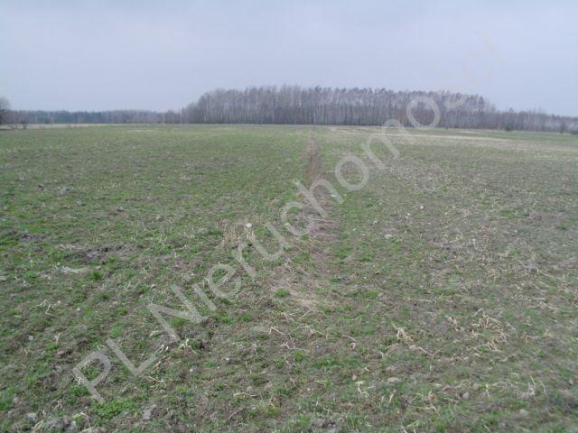 Działka rolna na sprzedaż Mszczonów  13500m2 Foto 1