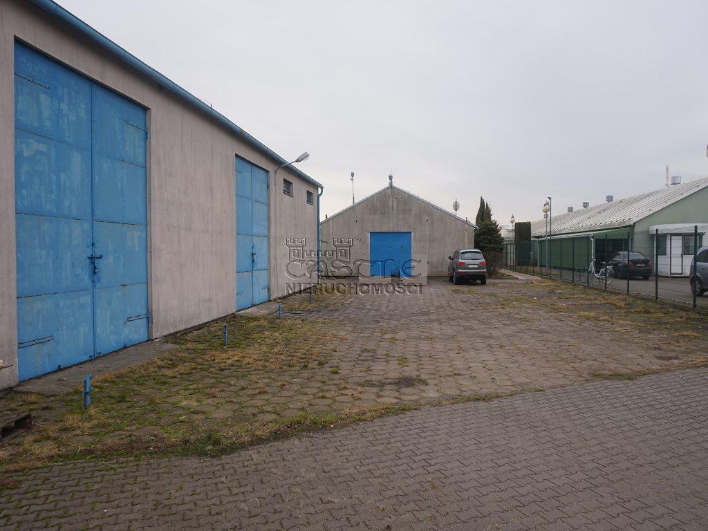 Lokal użytkowy na sprzedaż Czerniejewo  1250m2 Foto 14