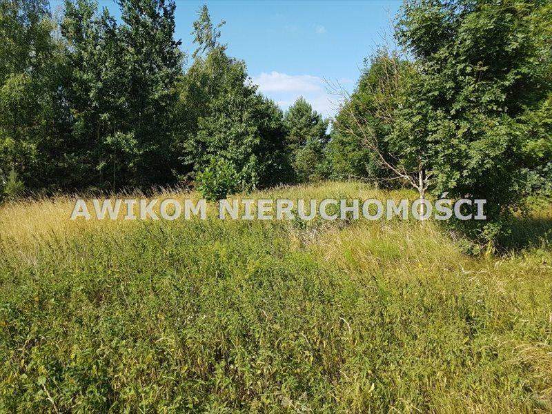 Działka budowlana na sprzedaż Żabia Wola, Żelechów  1446m2 Foto 8