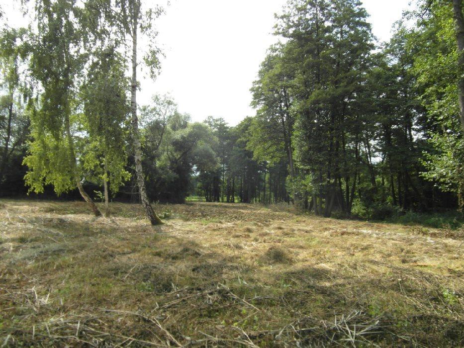 Działka budowlana na sprzedaż Krakowiany  7100m2 Foto 1