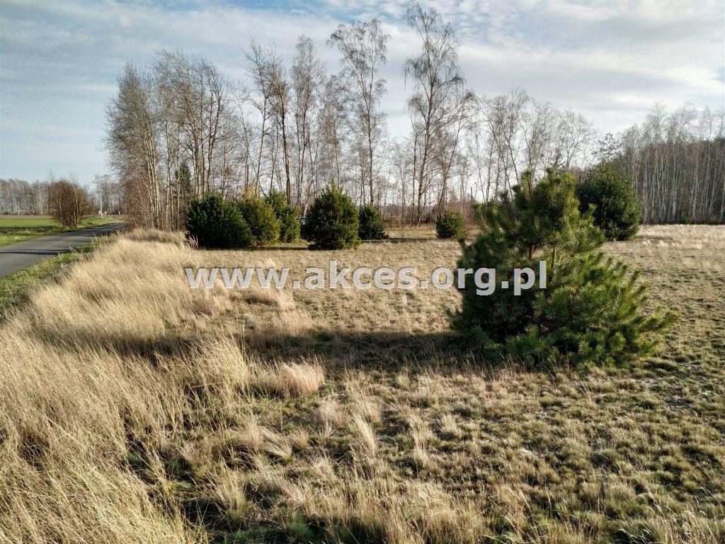 Działka siedliskowa na sprzedaż Nowa Wieś  3100m2 Foto 2