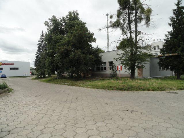 Lokal użytkowy na sprzedaż Elbląg, Rybna  579m2 Foto 5