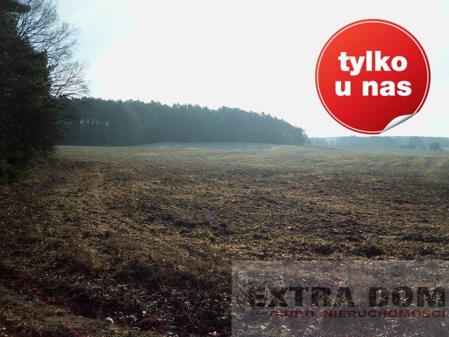 Dom na sprzedaż Sulęcin  690000m2 Foto 5