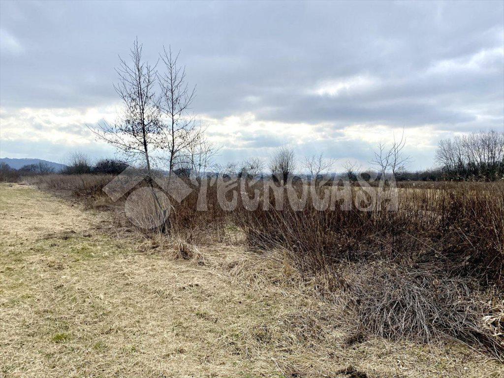 Działka rolna na sprzedaż Kraków, Bronowice, Mydlniki, Łupaszki  4700m2 Foto 5