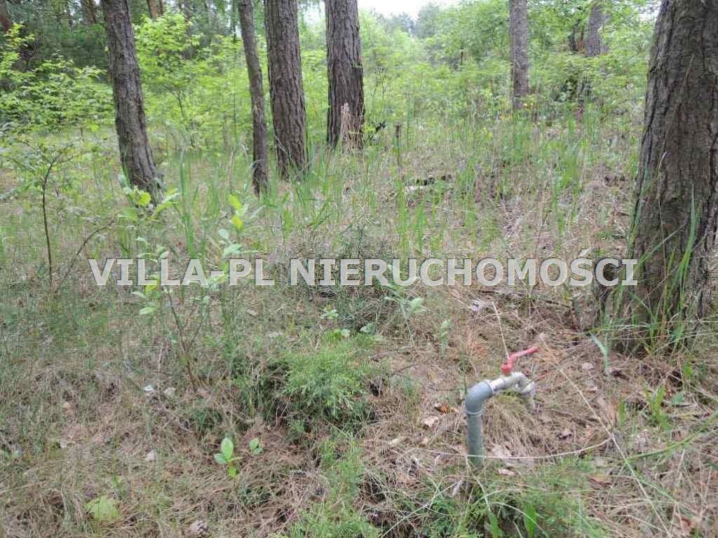 Działka budowlana na sprzedaż Rosanów  1000m2 Foto 4