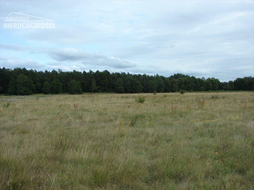 Działka rolna na sprzedaż Lubień, Lubień  46500m2 Foto 7