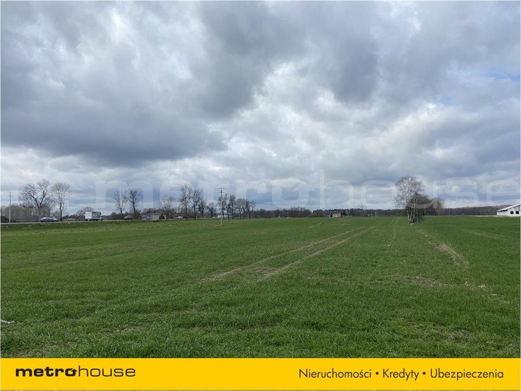 Działka rolna na sprzedaż Rogoźnica, Międzyrzec Podlaski  14100m2 Foto 5