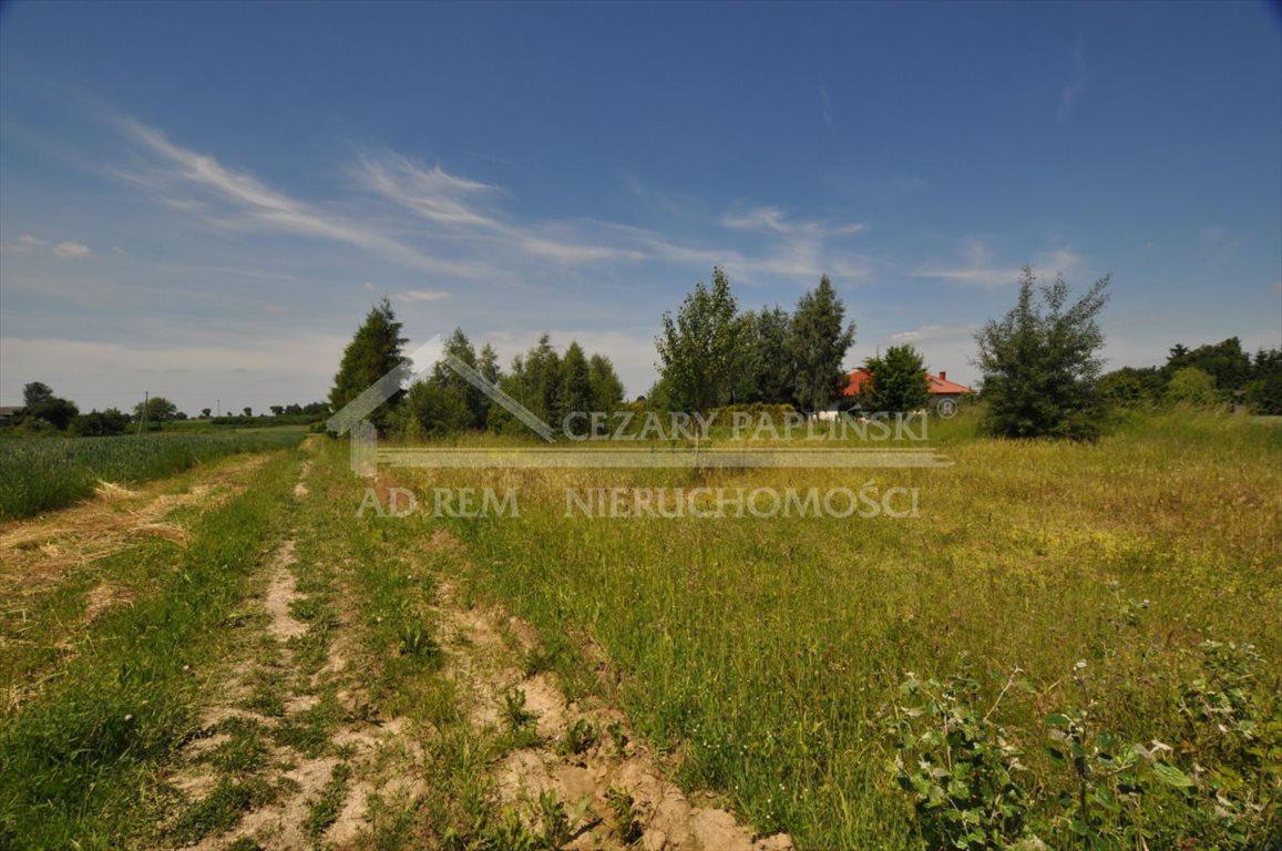 Działka rolna na sprzedaż Tomaszowice-Kolonia, Tomaszowice Kolonia  3000m2 Foto 2