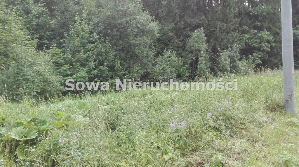 Działka inna na sprzedaż Mieroszów, okolice Mieroszowa  3900m2 Foto 4