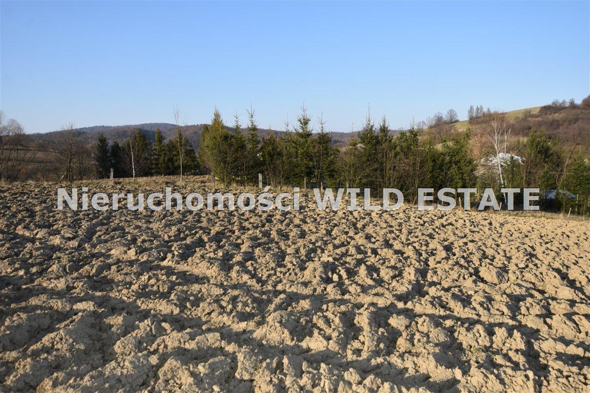 Działka rolna na sprzedaż Lesko, Średnia Wieś  3561m2 Foto 2