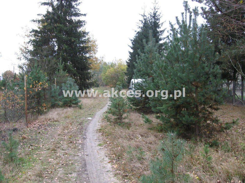 Działka leśna na sprzedaż Kędzierówka  3800m2 Foto 3