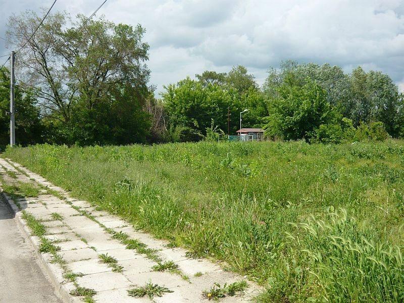 Działka budowlana na sprzedaż Tarnów, Strusina, Główna  5000m2 Foto 5