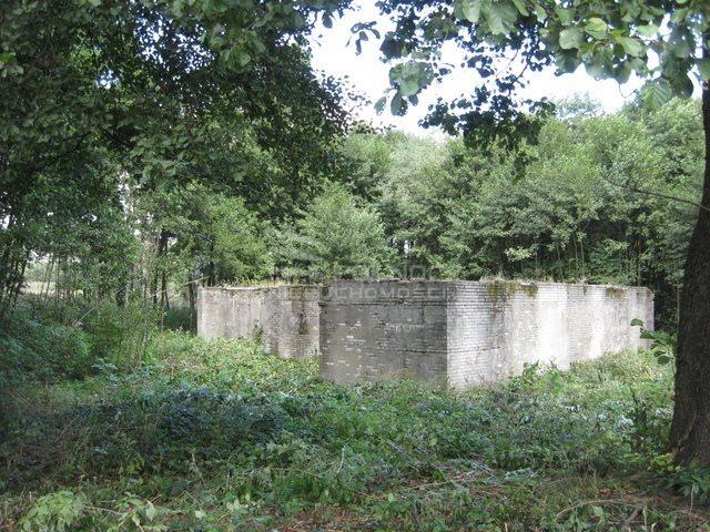 Działka budowlana na sprzedaż Bydlin  10980m2 Foto 1