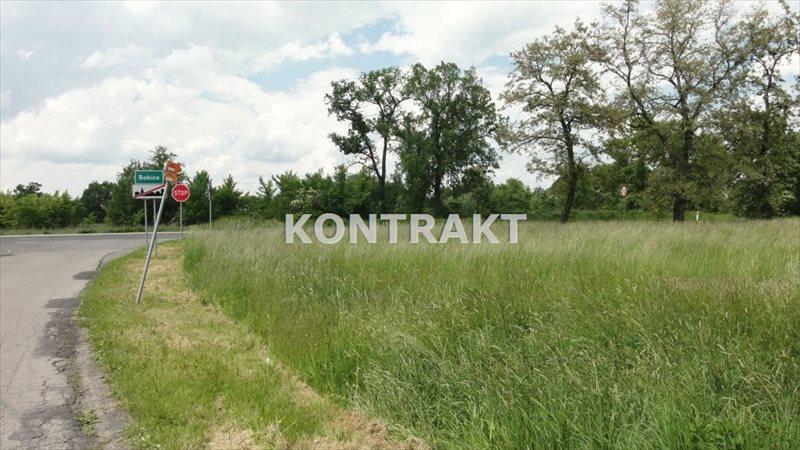 Działka inna na sprzedaż Oświęcim, Broszkowice, Świerkowa  2490m2 Foto 7