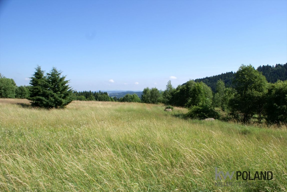 Działka rolna na sprzedaż Kudowa-Zdrój, Pstrążna  14309m2 Foto 8