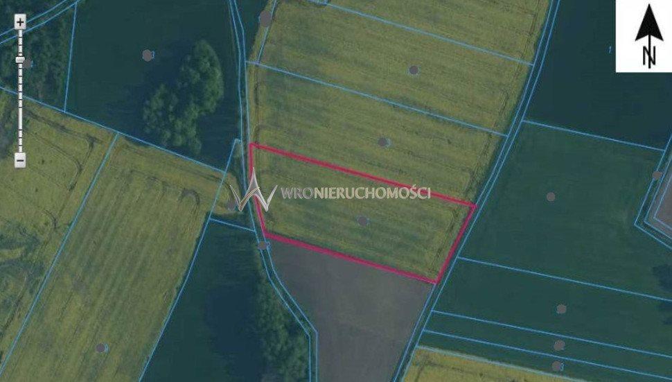 Działka rolna na sprzedaż Suchowice  8900m2 Foto 1