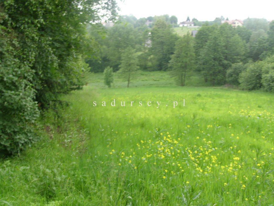 Działka rolna na sprzedaż Kraków, Podgórze, Romana Żelazowskiego  2410m2 Foto 7