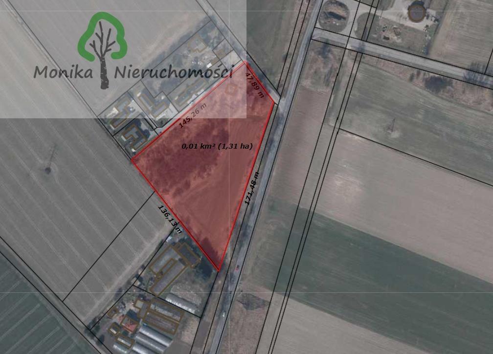 Działka budowlana na sprzedaż Tczew, Czatkowska  12999m2 Foto 2