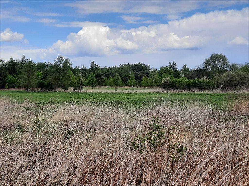 Działka rolna na sprzedaż Stare Babice, Wojcieszyn  1400m2 Foto 3