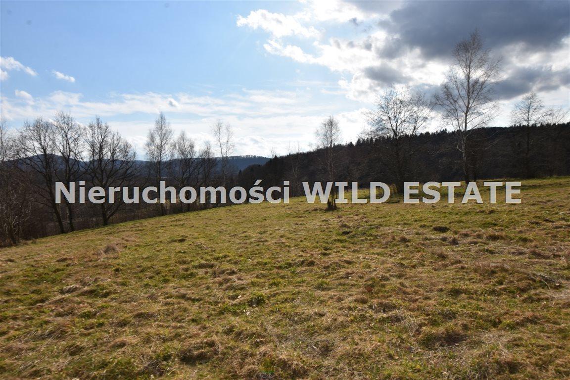 Działka inna na sprzedaż Olszanica, Uherce Mineralne  23516m2 Foto 3