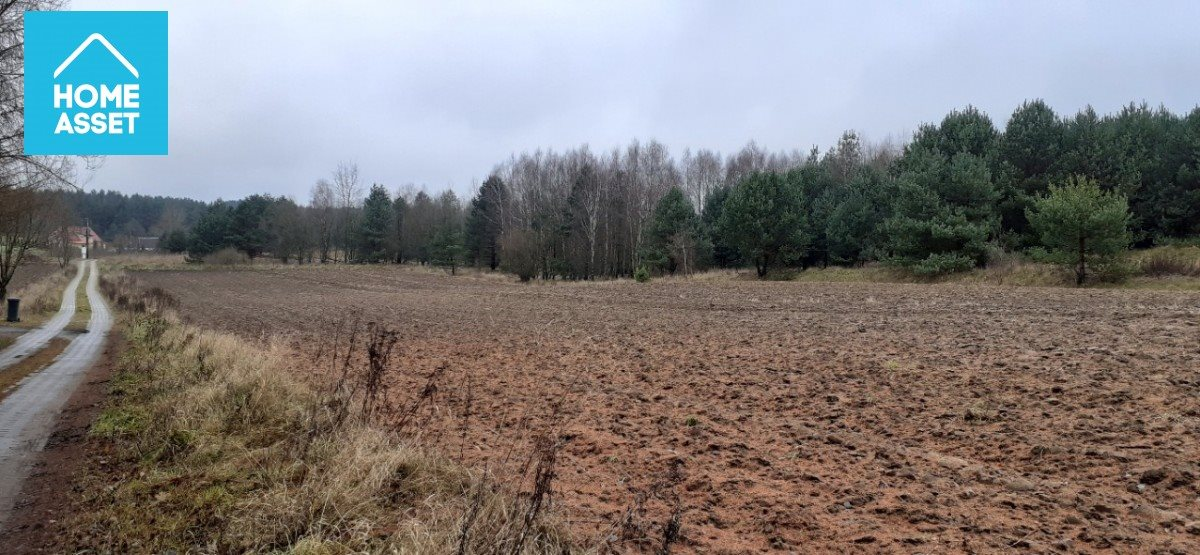 Działka rolna na sprzedaż Błotnia  9300m2 Foto 12